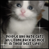 People who hate Cats